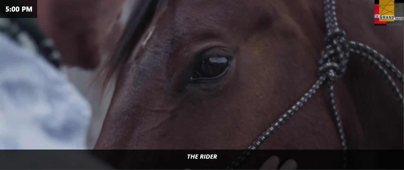 5:00 PM - THE RIDER - GRAND